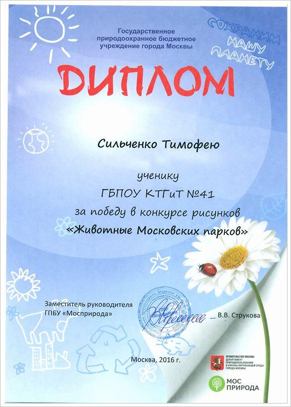 Диплом Сильченко Тимофея