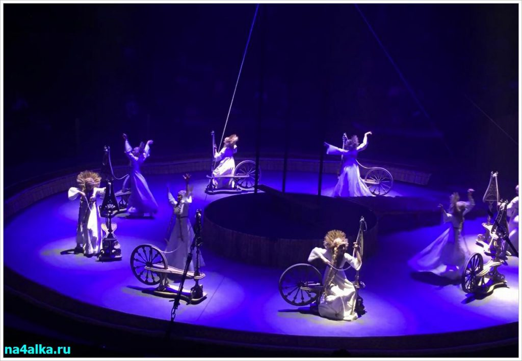 На арене цирка